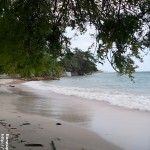 SAM 2539 150x150 Великолепный пляж в Капутьяне на острове Самал