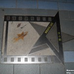 SAM 3152 150x150 Шоу «Симфония света»