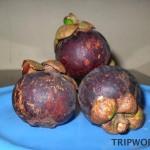 Mangostin in Thailand 150x150 Фрукты Таиланда
