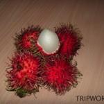 fruits in Thailand 193 150x150 Фрукты Таиланда