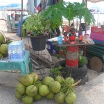 thai coconut 150x150 Фрукты Таиланда