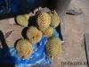 thumbs fruits in laos 22 Фрукты Лаоса (Вьетьян)