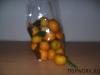 thumbs fruits in thailand 173 Фрукты Таиланда