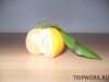 thumbs fruits in thailand 182 Фрукты Таиланда