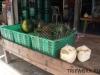 thumbs fruits in thailand 51 Фрукты Таиланда