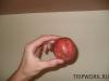 thumbs fruits in thailand 81 Фрукты Таиланда