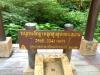 thumbs highest point in thailand 1 Национальный парк Дойинтханон или путешествие к самой высокой точке Таиланда