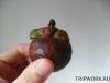 thumbs fruits in thailand 289 Мангостин в Таиланде