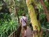 thumbs royal garden siribhum 14 Национальный парк Дойинтханон или путешествие к самой высокой точке Таиланда