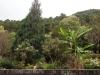 thumbs royal garden siribhum 20 Национальный парк Дойинтханон или путешествие к самой высокой точке Таиланда
