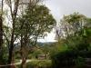 thumbs royal garden siribhum 21 Национальный парк Дойинтханон или путешествие к самой высокой точке Таиланда