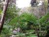 thumbs royal garden siribhum 23 Национальный парк Дойинтханон или путешествие к самой высокой точке Таиланда