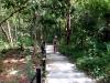 thumbs sirithan waterfall 6 Национальный парк Дойинтханон или путешествие к самой высокой точке Таиланда