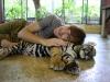 thumbs tiger kingdom 11 Королевство тигров (Tiger Kingdom)