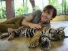 thumbs tiger kingdom 12 Королевство тигров (Tiger Kingdom)