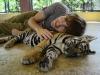 thumbs tiger kingdom 13 Королевство тигров (Tiger Kingdom)