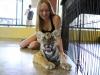 thumbs tiger kingdom 19 Королевство тигров (Tiger Kingdom)