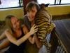 thumbs tiger kingdom 25 Королевство тигров (Tiger Kingdom)