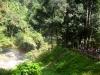 thumbs wachirathan waterfall 3 Национальный парк Дойинтханон или путешествие к самой высокой точке Таиланда
