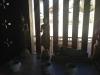 thumbs wat inthakhin saduemuang 10 Храмы Чиангмая. Часть 1 я